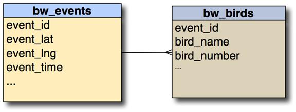 The Relationship Between bw_events and bw_birds